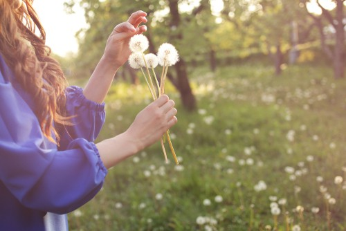 Addressing Allergies: A Multi-Pronged Approach