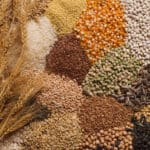 Grains and legumes are a source of nutrients